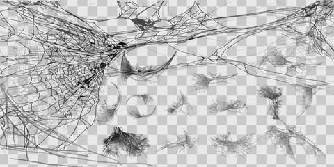 Vector illustration Halloween spider web isolated on transparent background. Hector venom cobweb set. Halloween monochrome spider web Wall mural