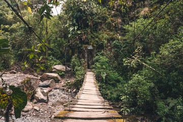 An old wooden suspended bridge crossing through the andean rainforest, in the Cocora Valley, Colombia