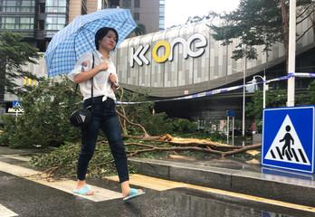 Pedestrian holding an umbrella walks past a fallen tree near a shopping centre, after Typhoon Mangkhut hit Shenzhen, Guangdong