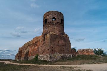 Obraz Zamek w Kole - fototapety do salonu