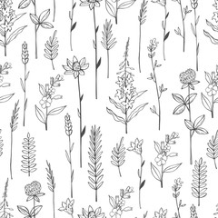 Vector seamless pattern with hand drawn wild herbs and flowers.