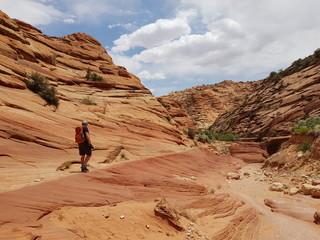 Krajobrazy Arizony - fototapety na wymiar