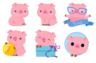 Cute Pig Set Vector Illustration. Cartoon Character