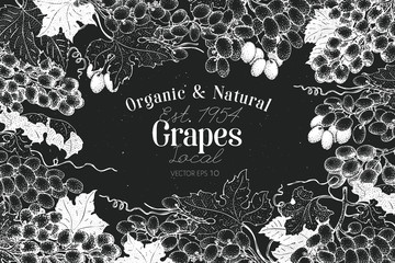 Grape berry frame template. Hand drawn vector fruit illustration on chalk board. Engraved style vintage botanical background.