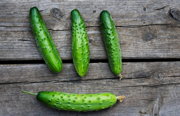 fresh farm cucumbers