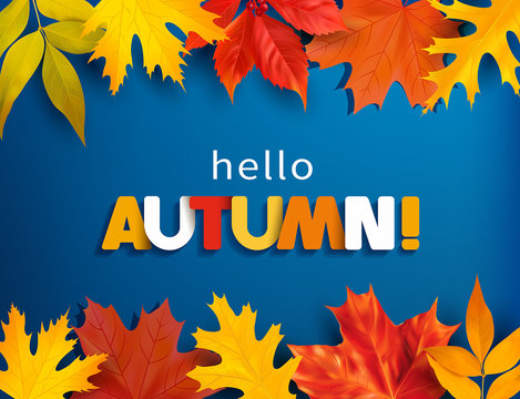 Autumn greeting background with colored leaves border. Vector illustration.