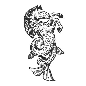 Fantastic fabulous fish horse animal engraving vector illustration. Scratch board style imitation. Black and white hand drawn image.
