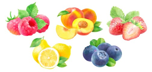 watercolor illustration of fruits and berries: strawberry, raspberry, peach, blueberry and lemon, isolated drawings by hand on white background