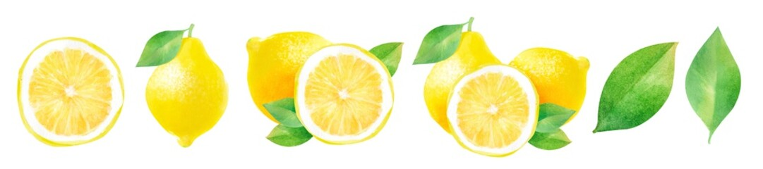 lemons and half a lemon, watercolor hand-drawn drawing of a fruits, isolated illustration on a white background Fototapete