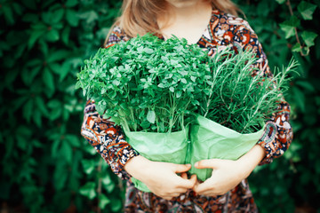 Little girl holding two pots with green herbs rosemary