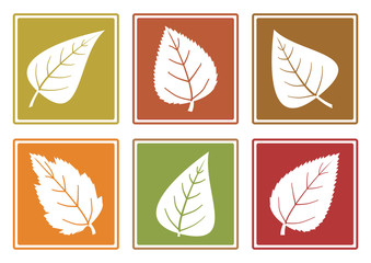 Autumn set of different leaf icons, white silhouettes leaves. Vector illustration