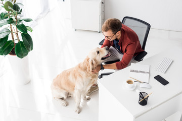 businessman sitting on chair and stroking dog in office Wall mural