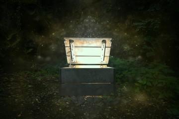 Mystische Kiste im Wald