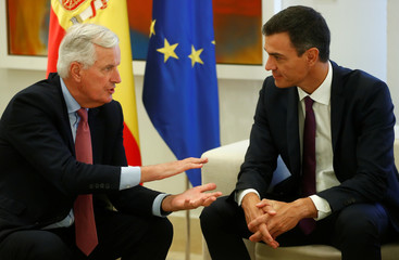 EU's chief Brexit negotiator Barnier and Spain's PM Sanchez chat during their meeting at Moncloa Palace in Madrid