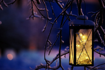 Lantern with Christmas lights hanging in tree branch.