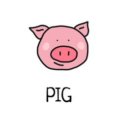 Cartoon vector flat illustration of cute pig face for baby card and invitation