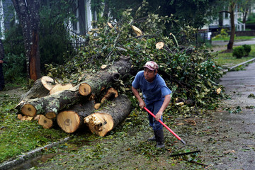 A man clears a downed tree after Hurricane Florence struck on Wilmington