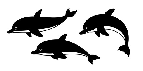 dolphin vector fish icon logo shark whale cartoon character illustration symbol doodle