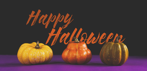 Happy Halloween graphic banner with mini pumpkins and orange text for the holiday