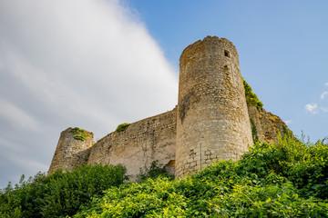 Château fort de Billy