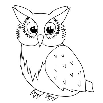 isolated owl character, book coloring