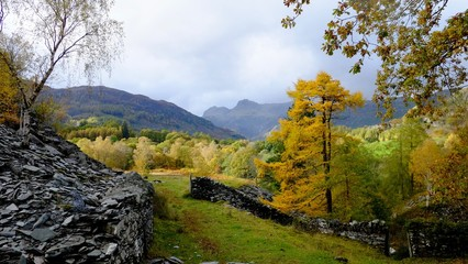 Langdale Pikes in the Autumn