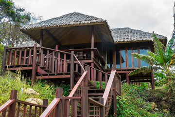 Wooden bungalow with stairs and thatched roof among palm trees