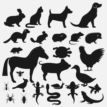 Pets silhouettes icons set