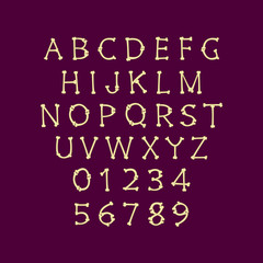 Bone font vector letters and numbers isolated
