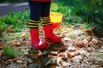 little girl play with acorns in nature, prepare for halloween