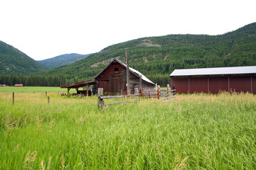 Rural Meadow with Red Barn