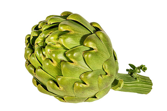 Fresh artichoke isolated on white background with clipping path