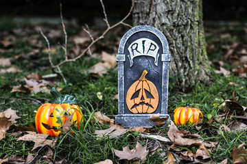 Tomb and pumpkins in the woods on Halloween