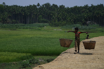 A boy carries baskets along the side of a road in Cox's Bazar
