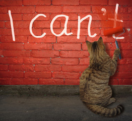 The cat is painting over the letter t in the word can't with a pait roller on a red brick wall.