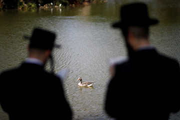 Ultra-Orthodox Jews perform the Tashlich ritual ahead of Yom Kippur in Ramat Gan, Israel