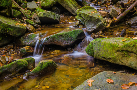 Small creek in the Carpathian Mountains in the autumn season