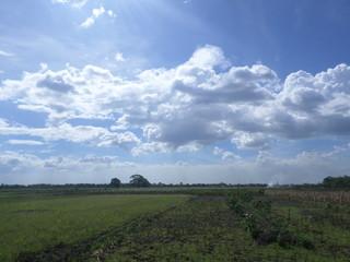 beautiful sky wiyh cloud in a day