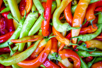 Aluminium Prints Hot chili peppers multicolor peppers. hot chili pepper background