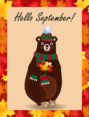 Hello september greeting card with cute bear in hat and scarf holding fallen leaves