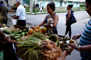 Melisa Sanchez buys vegetables carrying her puppy dog Yan in Havana, Cuba