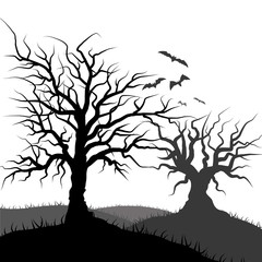 Flying Bat and tree grass silhouette