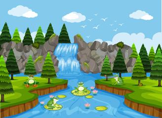 Frogs in waterfall scene