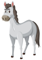 Grey horse white background