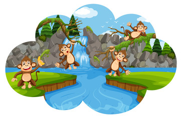 Set of monkeys in nature scene