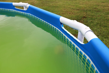 Super Green Water with Algae Growth in Backyard Above Ground Swimming Pool