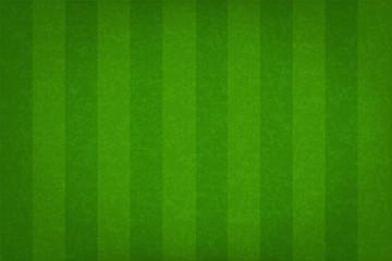 Green grass field pattern for sport background. Grass court for soccer, football, rugby, golf, baseball. Vector.