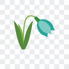 snowdrop icon isolated on transparent background. Modern and editable snowdrop icon. Simple icons vector illustration.