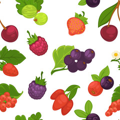 Fruits and berries raspberry and strawberry pattern vector