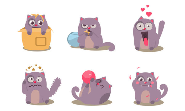 Grey mischievous cat in different situations with various emotions set, funny animal character vector Illustration on a white background